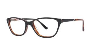 Kensie-eyewear Merchamp Optical